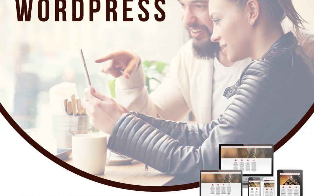 Cursus WordPress in Apeldoorn