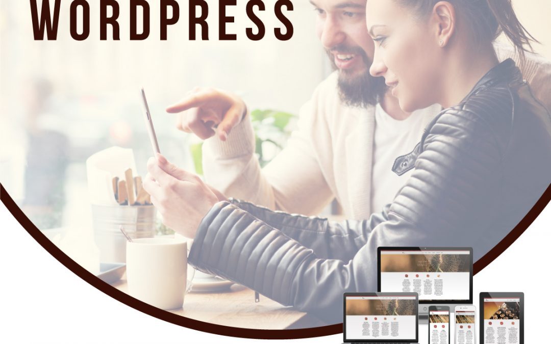 WordPress voor gevorderden in Apeldoorn